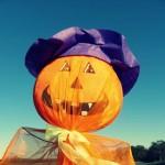 Préparer Halloween, c'est pas sorcier !