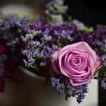 Comment choisir son bouquet de fleurs pour un cadeau d'anniversaire ?