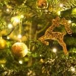 5 idées de cadeaux originales pour Noël